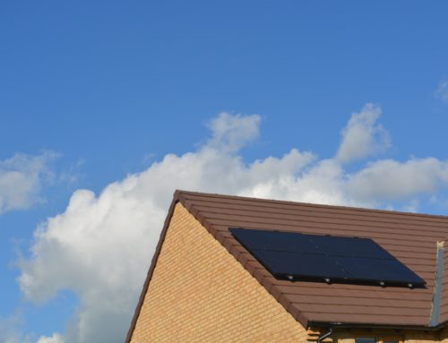 Why You Should Consider Solar Panels for Your Home