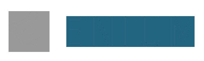 Enium Logo